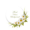 Floral Vector Background. Royalty Free Stock Photo - 78197175