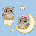 Valentine Card With Lovers Owls Stock Image - 78202801