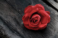Red Rose Over Old Aged  Wood Royalty Free Stock Images - 78379889
