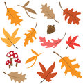 Fall Leaves Stock Images - 78394274