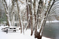 Winter Time At The Lake Stock Image - 7840031