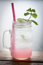 Lychee Fizzy Drink With Mint And Soda Royalty Free Stock Photography - 78410677