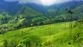 Beautiful Green Valley Stock Images - 78430574