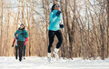 Group Of Friends Enjoying Jogging In The Snow In Winter Royalty Free Stock Photo - 78437485