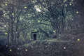 Fairies House In The Wood Royalty Free Stock Photo - 78468055