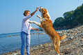 Young Woman Is Training Her Dog  Near Sea Royalty Free Stock Photos - 78497008