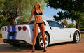 Blond Bikini Babe With Corvette Royalty Free Stock Images - 7852059