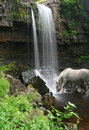 Horse Drinks At Foot Of Waterfall Stock Photos - 7858243