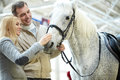 Cute White Horse Royalty Free Stock Images - 78542859