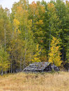 Old Decrepit Shed In Autumn. Royalty Free Stock Photography - 78624037