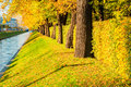 Autumn Landscape - Swan Canal In St Petersburg And Autumn Park With Golden Autumn Trees In Sunny Weather Royalty Free Stock Photo - 78638255