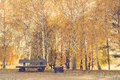 Empty Bench In The Autumn Park Royalty Free Stock Photography - 78734987