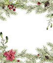 Watercolor Christmas Invitation. Fir Branch With Holly, Mistletoe And Poinsettia. New Year Tree Border With Decor For Stock Photos - 78757213