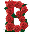 Letter B Red Roses  Illustration Royalty Free Stock Images - 78764919