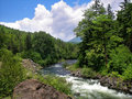 River Running In Forest Stock Photos - 7880513