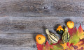 Real Autumn Gourd Decorations And Leaves On Rustic Wooden Boards Royalty Free Stock Images - 78837469