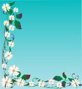 Vector Daisy Background Royalty Free Stock Image - 7895966
