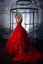 Fashion Blonde In Red Dress With Fluffy Skirt Near The Birdcage, Concept Of Liberation Stock Photography - 78916162