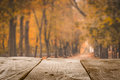 Autumn Background With Wood Table And Park Royalty Free Stock Images - 78979939