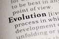 Evolution Stock Image - 78999431