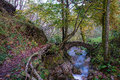 Small Ancient Bridge Of Rocks In A Creek In The Woods Stock Image - 79036771