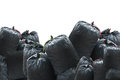 Black Bag Of Rubbish Isolated On White Background Stock Photo - 79186550