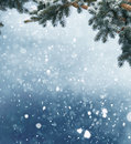 Winter Christmas Background With Fir Tree Branch And Cones Stock Images - 79199114