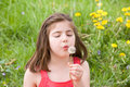 Little Girl Blowing Dandelion Seeds Royalty Free Stock Photo - 7927315