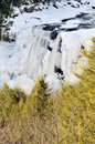 Blackwater Falls, WV, In Winter Vertical Royalty Free Stock Photography - 7928467
