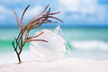 Christmas Glass Ball On White Sand Beach With Seascape Backgrou Stock Image - 79267531