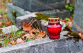 Burning Cemetery Candle Stock Photography - 79284932