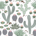 Funny Seamless Pattern With Cactus.Exotic Tropical Background. Stock Images - 79305654