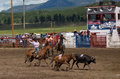 Ranchers Competing At A Rodeo In Colorado Royalty Free Stock Photo - 79318655