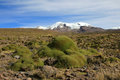 The Three Peaks Of Volcano Coropuna In The Andean Mountains Peru Stock Photography - 79350742