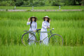 Pretty Girl In Vietnam, Smile Royalty Free Stock Images - 79422519