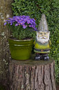 Gnome Standing On Tree Stump Next To Aster Flowers Stock Photography - 79505642