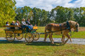 Horses Pull Wagon At Landis Valley Stock Photo - 79534600