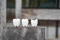 Icon Of Decayed Tooth And Healthy Tooth Stock Photography - 79559622