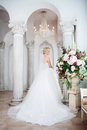 Charming Young Bride In Luxurious Wedding Dress. Pretty Girl, The Photo Studio Royalty Free Stock Photos - 79590158
