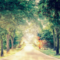 Road Stretching Into The Horizon With Trees Alley And Bokeh Stock Images - 79662424