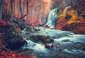 Autumn Forest With Waterfall At Mountain River At Sunset Stock Image - 79687211