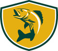Walleye Fish Jumping Crest Retro Royalty Free Stock Photography - 79753217