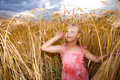 Little Girl In Wheat Field Royalty Free Stock Photography - 7982977