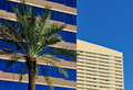 Office Buildings And Palm Tree Stock Photo - 7989140
