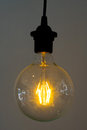 Incandescent Lamps Royalty Free Stock Photography - 79832717