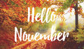 Hello November Royalty Free Stock Image - 79845666