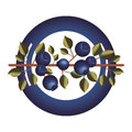 Dish With Blueberry Branch And Leafs Stock Photo - 79855230