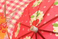 Cocktail Umbrellas In Bright Colors Royalty Free Stock Photography - 7995017