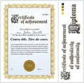 Gold Certificate. Template. Vertical. Royalty Free Stock Photo - 79908435