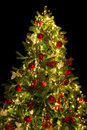 Top Of The Christmas Tree Royalty Free Stock Images - 79933119